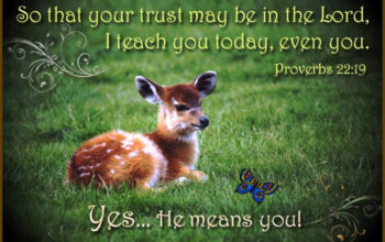 Bible verse plus a baby deer laying in the grass - overcoming life's obstacles.
